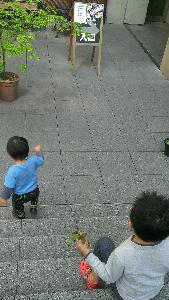 IMAG0169_1.jpg